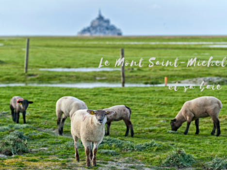 adventures-5-mont-st-michel